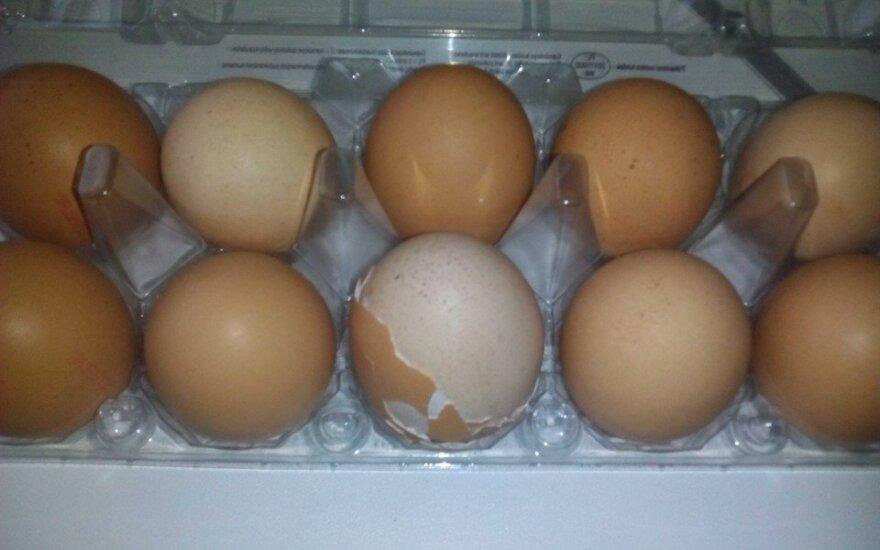 Pirkėją nustebino siurprizas kiaušinių pakuotėje: kaip tai įmanoma?