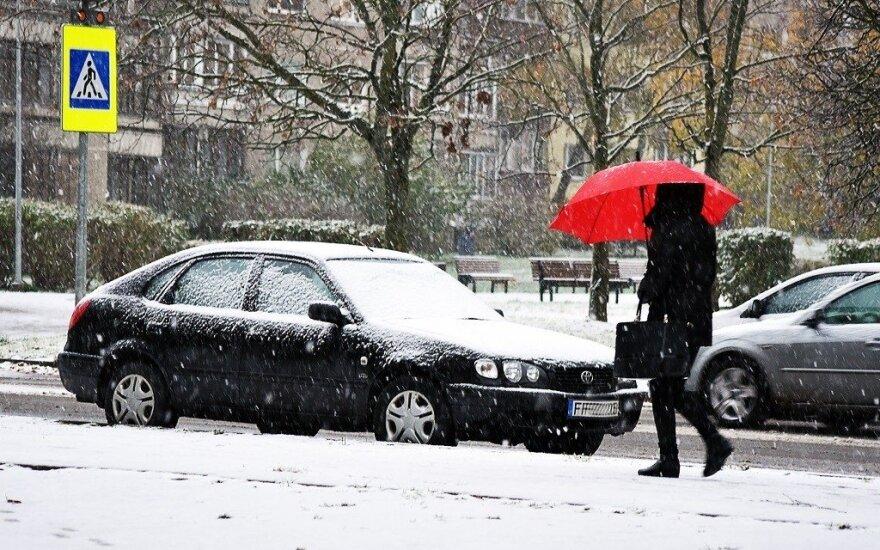 Vytauto Šauklio pirmasis sniegas