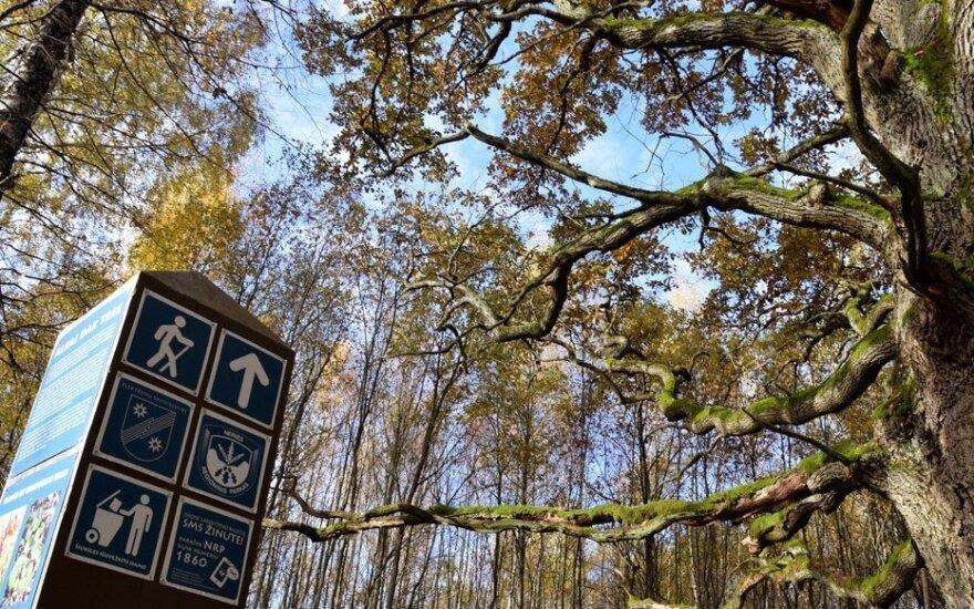 Pažintinis takas Neries regioniniame parke