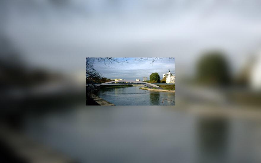 Karaliaus Mindaugo tiltas, projektas
