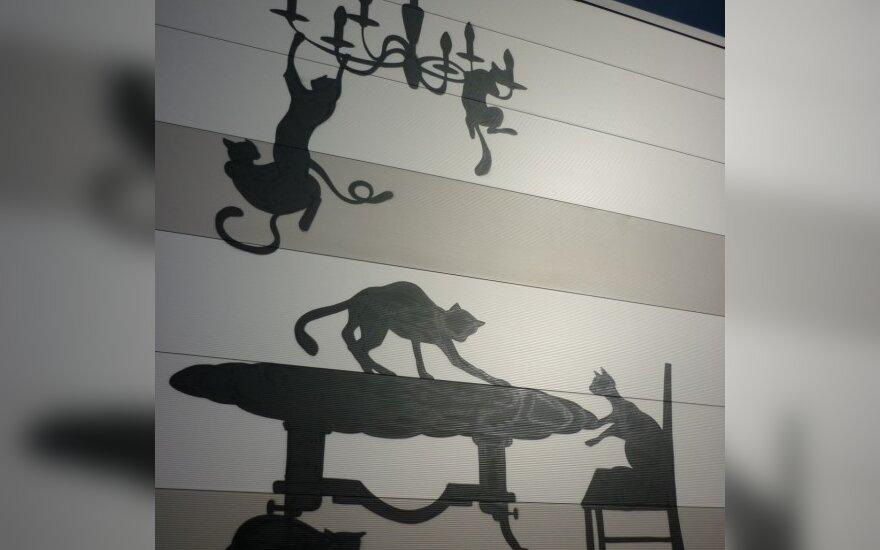 Grafitis katinų tema