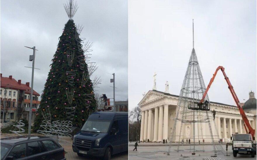 Panevėžys planuoja šiemet pelnyti gražiausios Kalėdų eglės pripažinimą