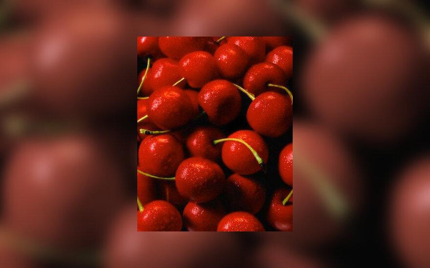 Vyšnios, trešnės