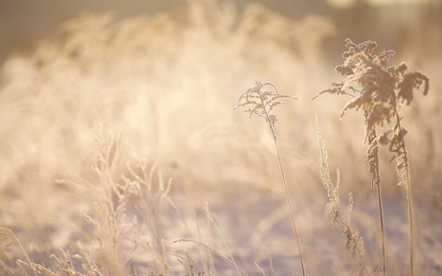 Orai: arktinis šaltis šalį sukaustys ilgam