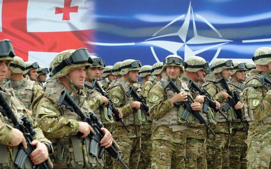 Georgia deserves to join NATO, says defence minister in Vilnius