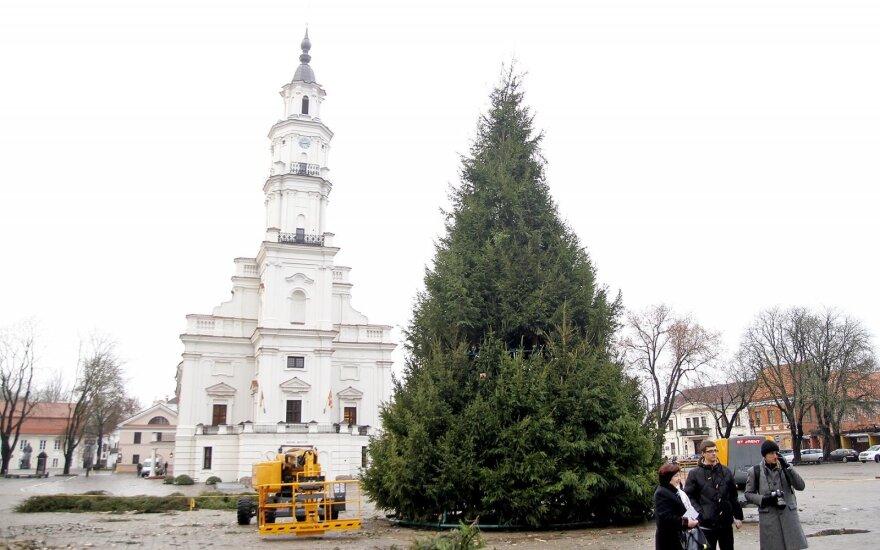 Kaunas ruošiasi įspūdingam reginiui