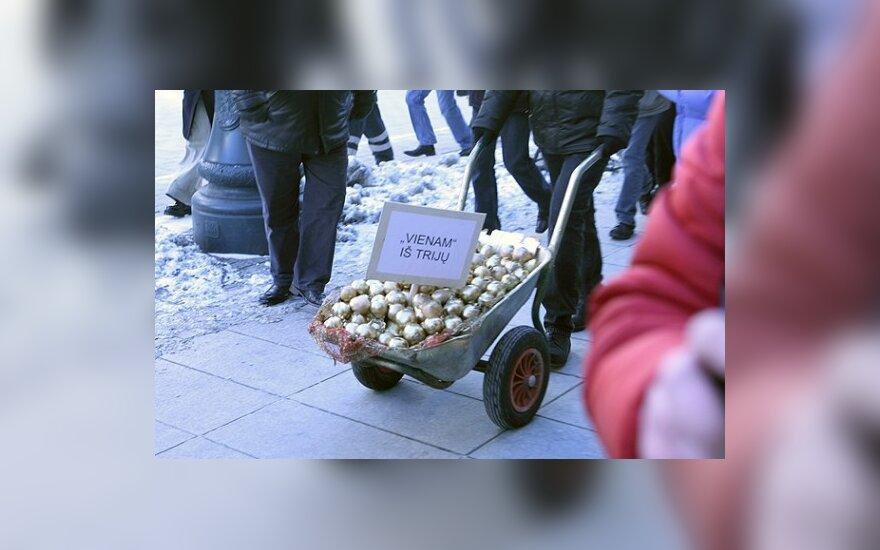 """Policija prašo nubausti """"Svogūnų akcijos"""" organizatorius"""