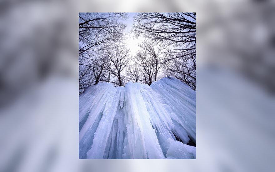 žiema, šaltis, ledas, sniegas