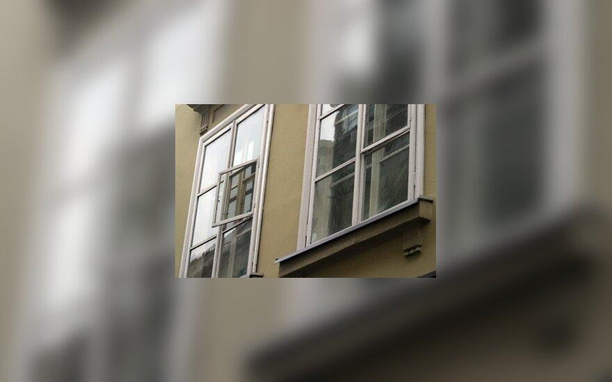 Kaunietė per langą išsviedė šunį
