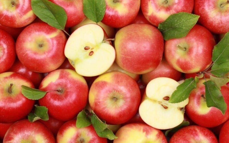Klausimas gydytojai: ar naudingos obuolių iškrovos dienos?
