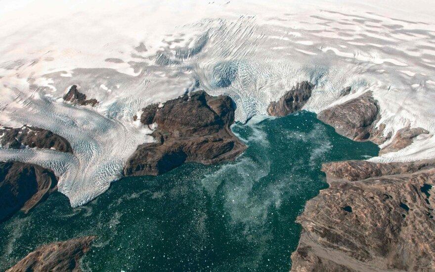 Tirpstantys ledynai.