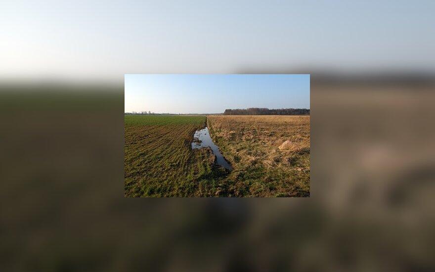 Ūkininkai po ekologinės nelaimės nesulaukia kompensacijų