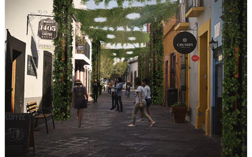 """""""Urban Greening"""" programa """"Daza Module"""" (Keretaras, Meksika)"""