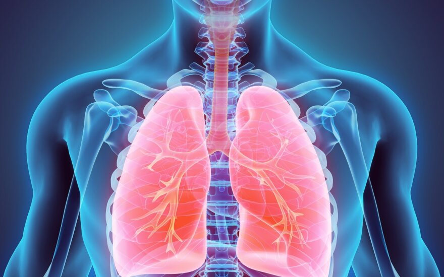 Plaučiai