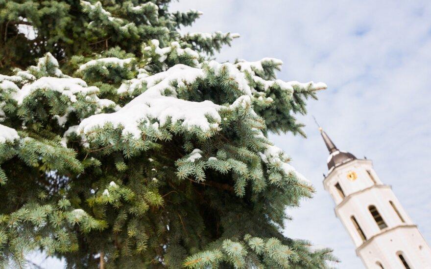 Naujas metodas leidžia nuspėti, kokia šiemet bus žiema