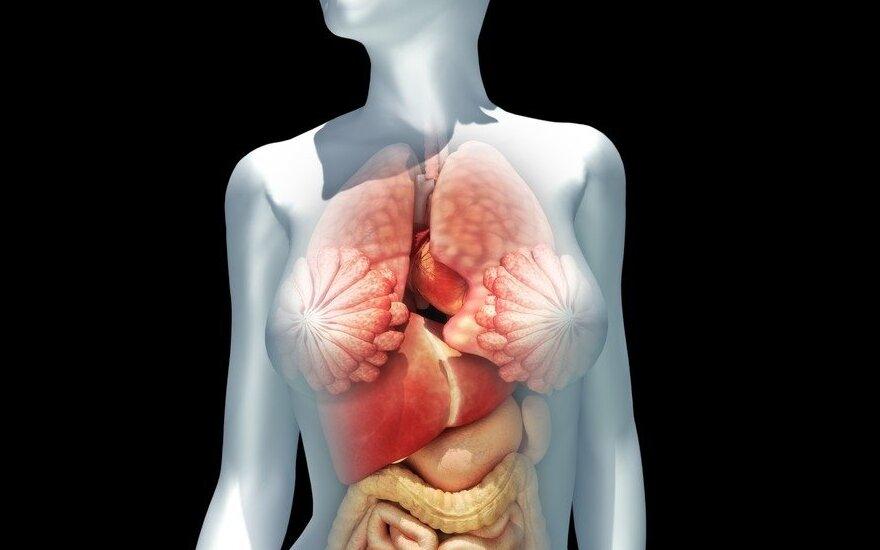 Europoje žmonių organais nebepaprekiausi