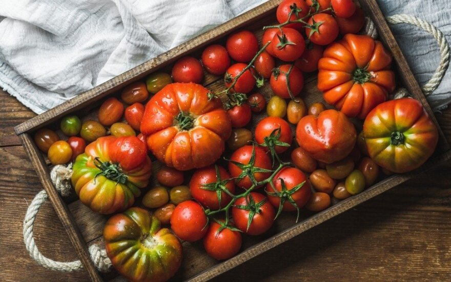 Atsakytas klausimas, kodėl lietuviškas pomidoras yra pats sveikiausias pasaulyje
