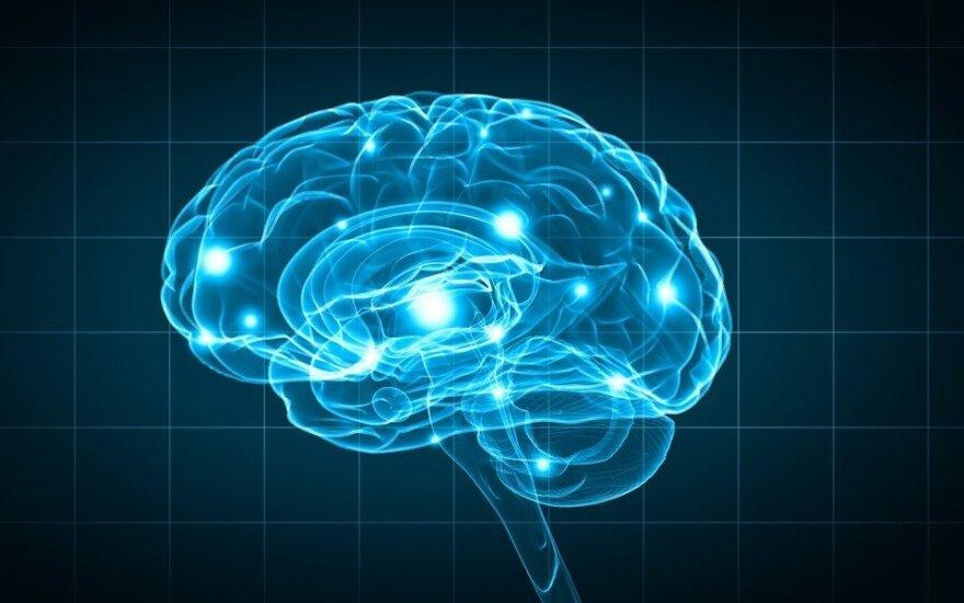 Mokslininkai skelbia atradę naują būdą pagerinti atmintį