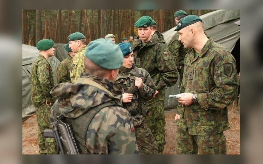 Lithuania to increase number of professional troops