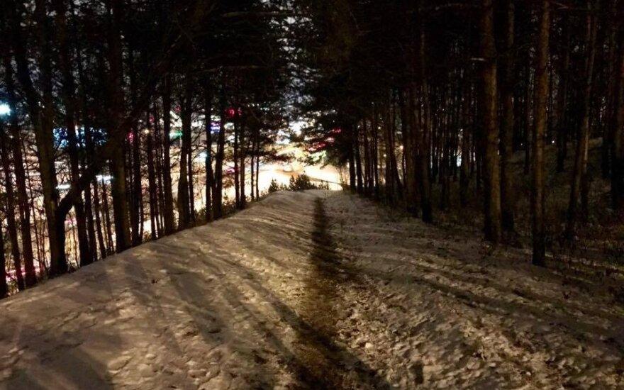 Kitokie pasivaikščiojimai. Kaip Vilniaus miškais nueiti iki didžiųjų prekybos centrų