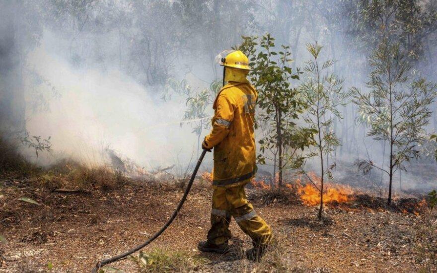 Australijoje siaučiant krūmynų gaisrams evakuojami tūkstančiai gyventojų