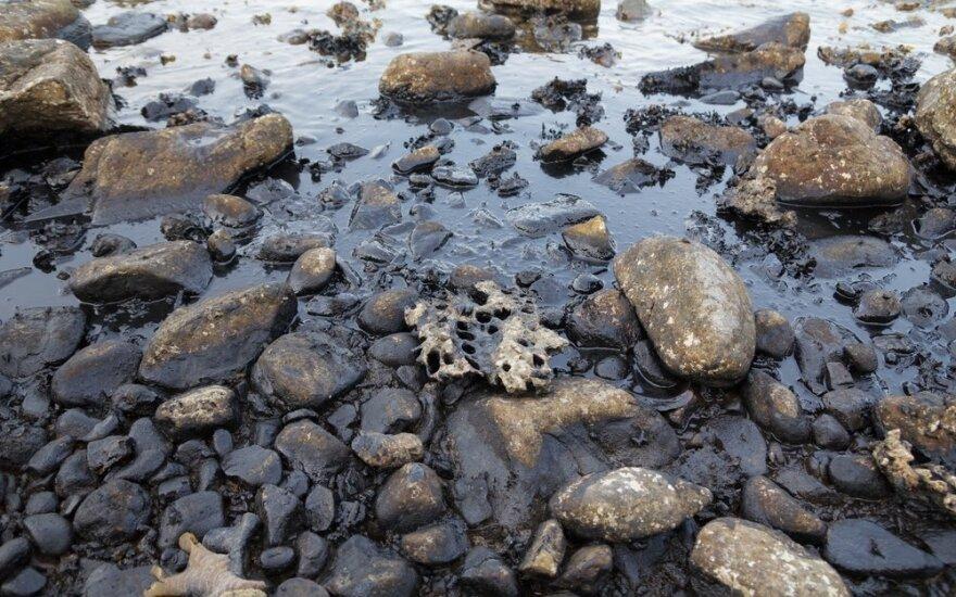 Užteršta vandens telkinio pakrantė