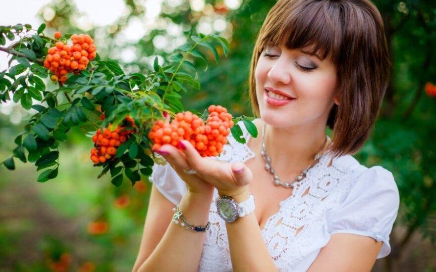 Tikra rudens puošmena - vitamino C bomba, gydanti daugybę negalavimų