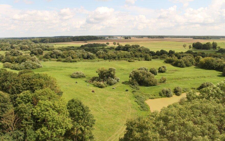 Ieškantiems įdomių maršrutų Lietuvoje: kodėl verta vykti į Panevėžį?
