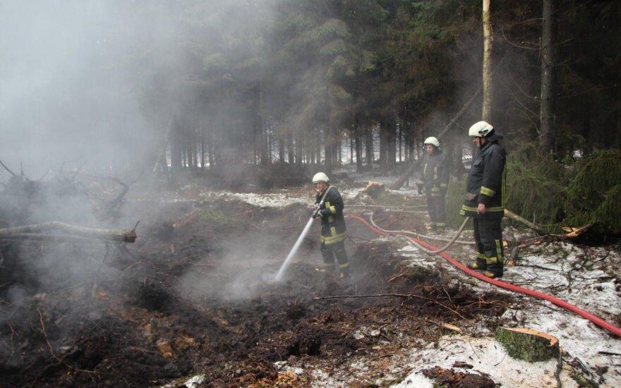 Požeminis gaisras // VĮ Valstybinių miškų urėdijos nuotr.