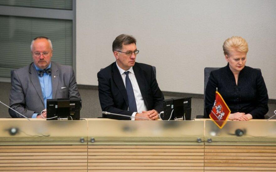 A. Butkevičius sunerimo dėl politinio stabilumo