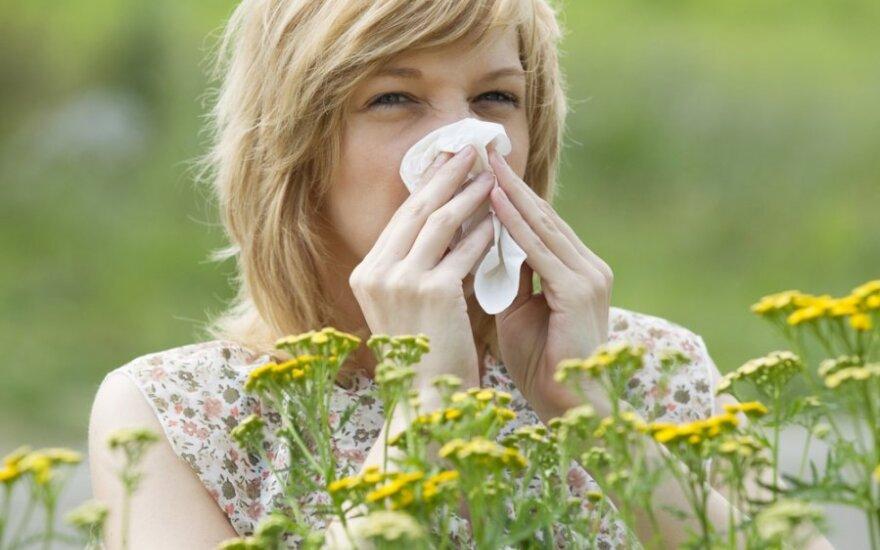 Imunoterapija teikia vilčių sergantiems alergija