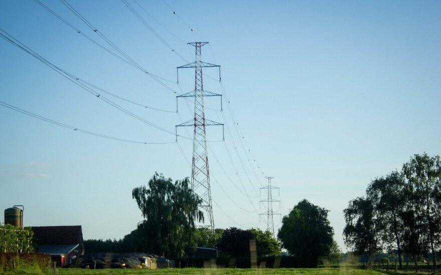 """""""Modus Group"""" prekiaus elektra"""