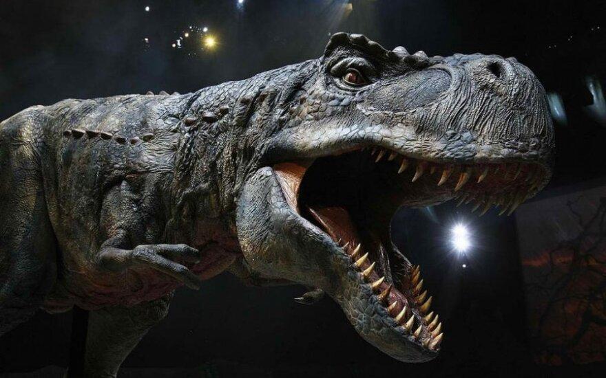 """Filmas """"Pasivaikščiojimas su dinozaurais 3D"""""""