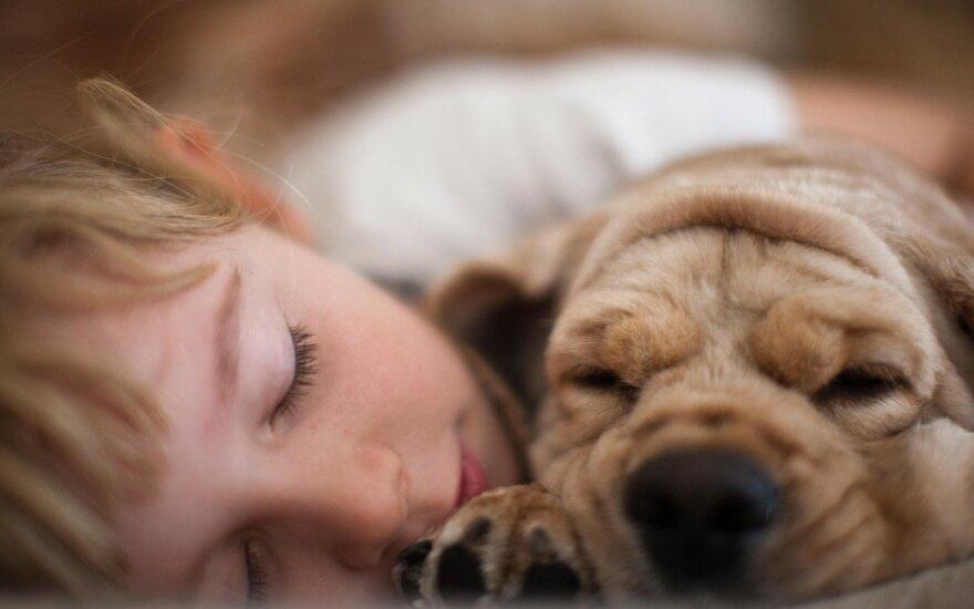 Vaikas ir šuo (asociatyvi nuotrauka)