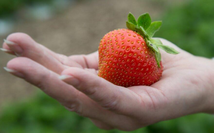 Jei lietuviška – tai būtinai sveikiau ir natūraliau?