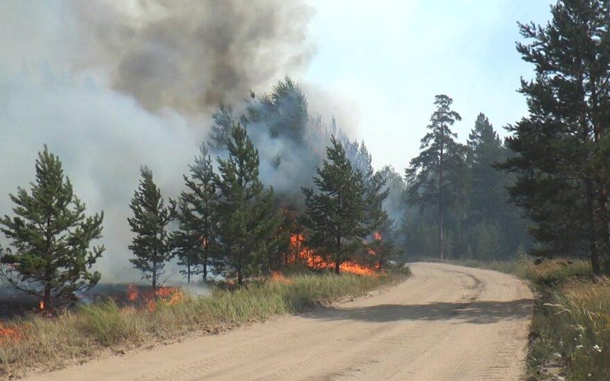 Čeliabinsko srityje miškų gaisrai