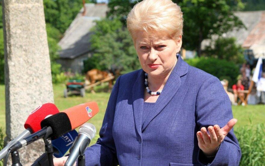 D.Grybauskaitė apie skalūnų dujas: reikia suskubti statyti dujų terminalus