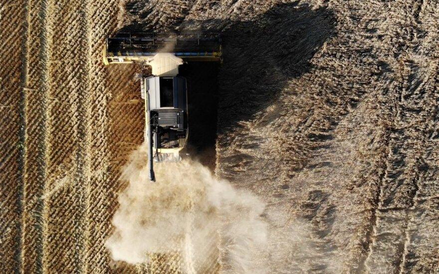 Augalinių liekanų tvarkymas siekiant žemės ūkio tvarumo ir rentabilumo