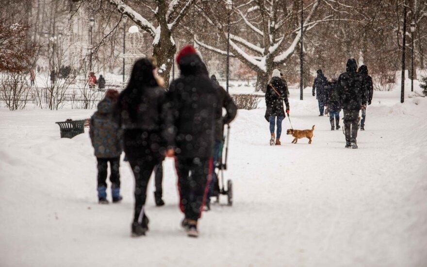 Už nevalytas teritorijas Vilniuje skirta per 340 tūkst. eurų baudų