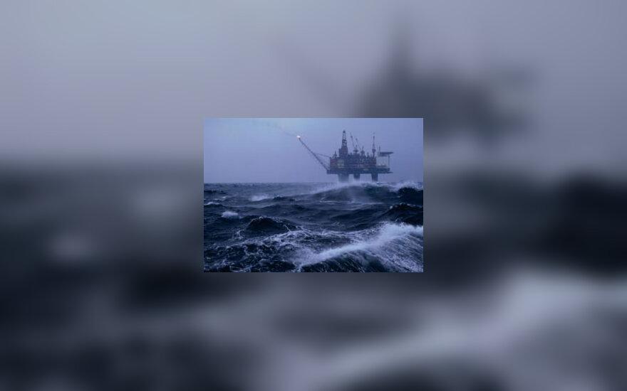 Nafta jūroje