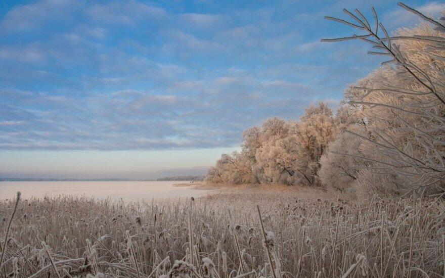Šiauliai, Rėkyvos ežeras, DELFI skaitytojo Mindaugo M. nuotr.