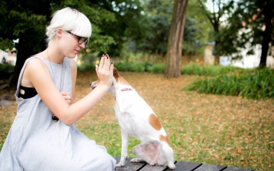 Priglaudė šunį, kuris pinigus dabar užsidirba pats