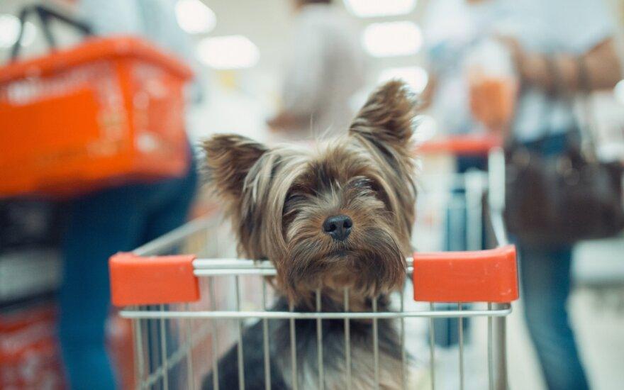 Šuo prekybos centre