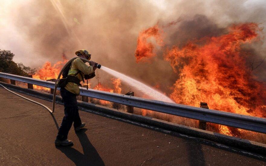 Švedijoje siaučiantys gaisrai perspėja Europą, kas laukia mūsų visų
