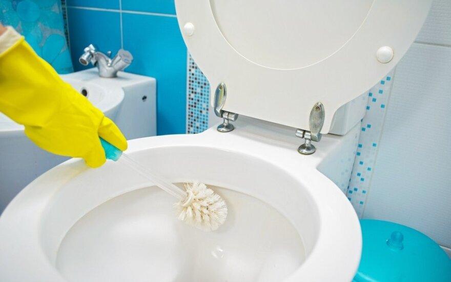 Kaip natūraliomis priemonėmis išblizginti tualetą: spindės lyg naujas