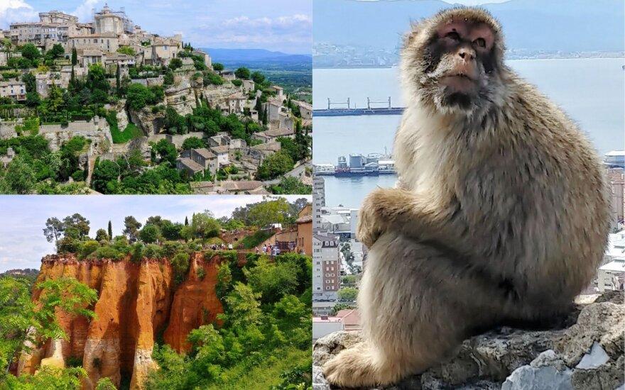 Kelyje po Europą: džiaugsmas piniginei, laisvėje gyvenančios beždžionės ir laimingi žmonės