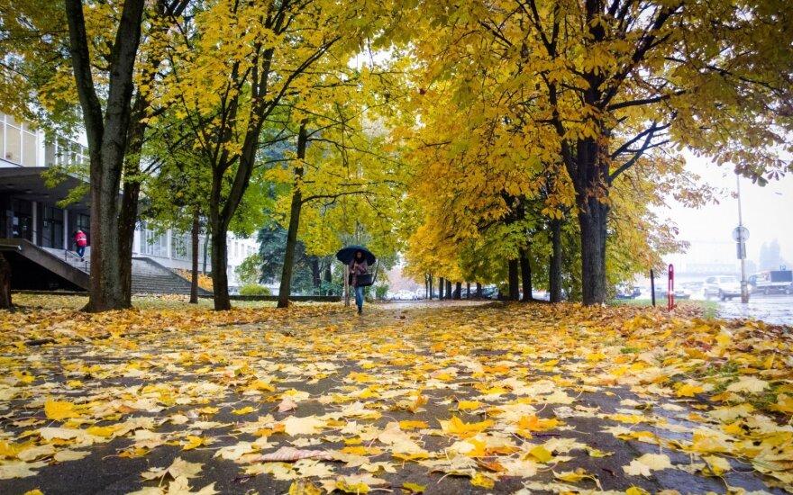 Orai: lapkritis atneš pokyčių