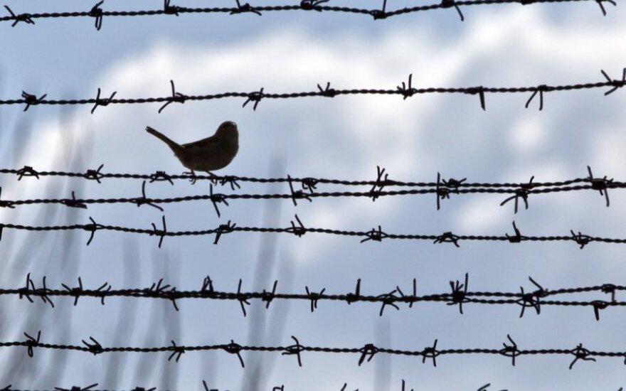 Kodėl Norvegijos kalėjimuose praleidžiama ne daugiau 21 metų?