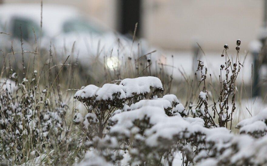 Fiksuok! Lietuvoje prognozuojamas sniegas – pasidalink nuotraukomis!