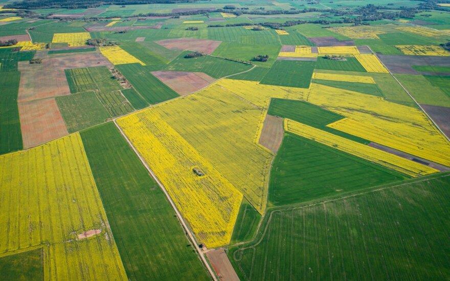 Po reformos likusios žemės tvarkymas kainuos 3,5 mln. eurų